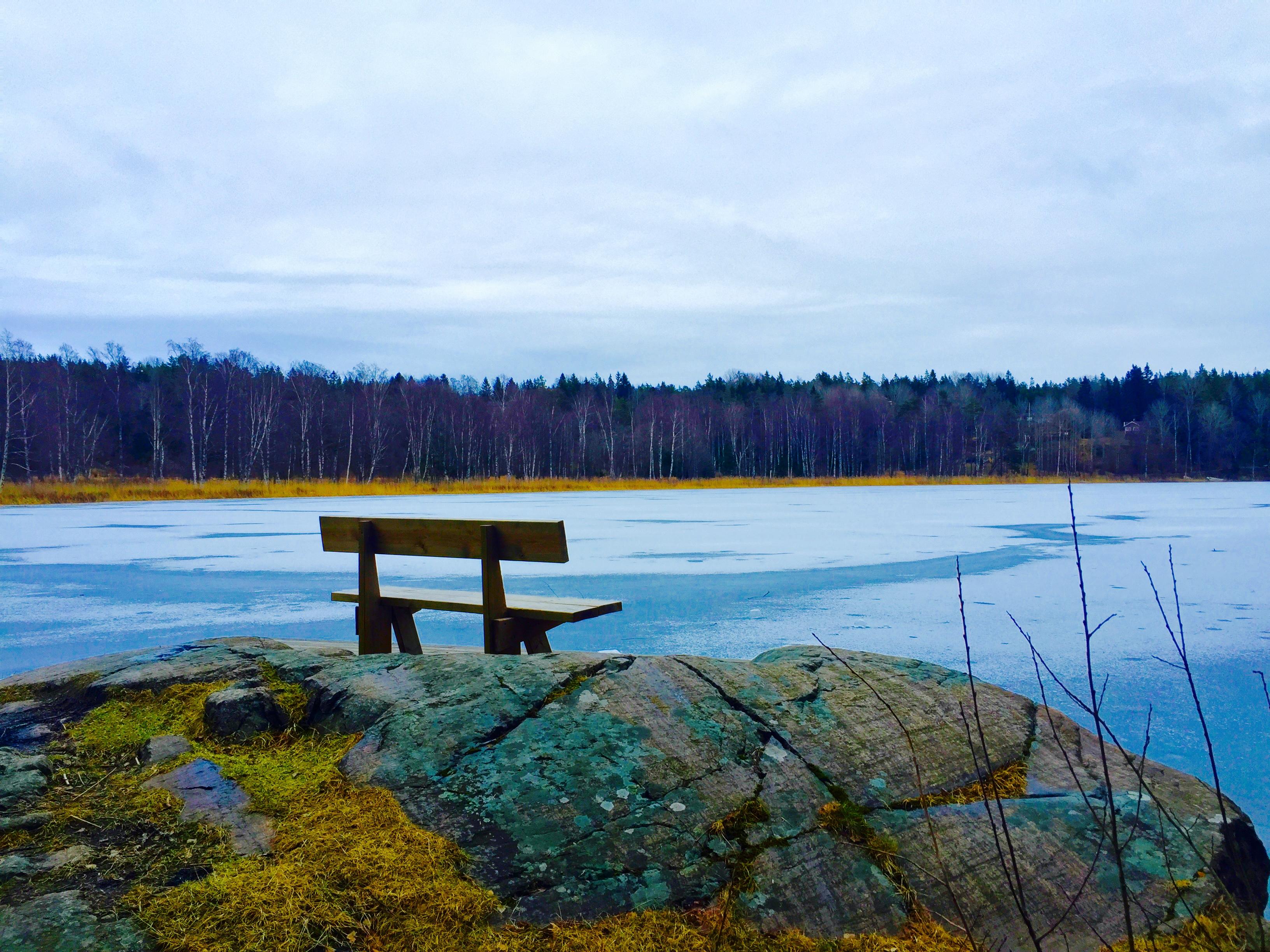Ensam bänk vid blåfrusen sjö