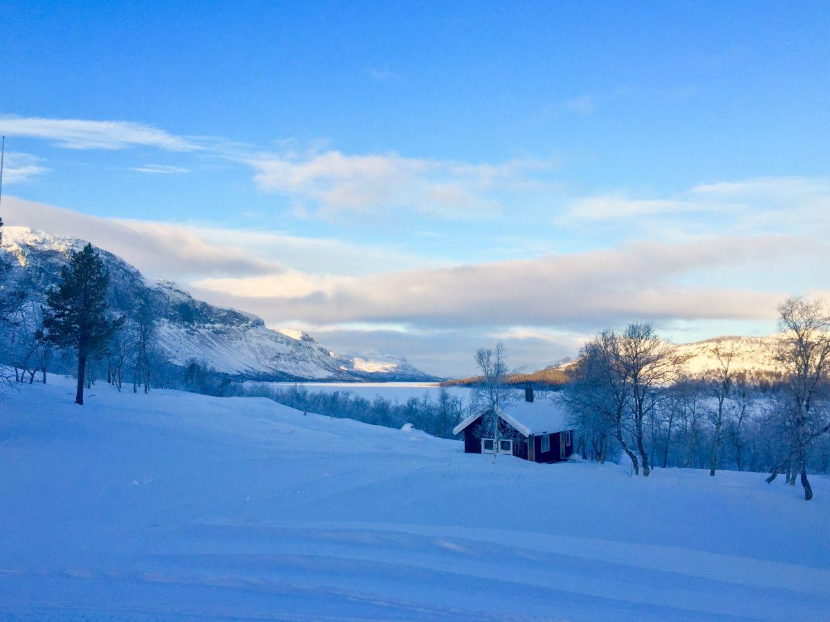 Fjäll i snö