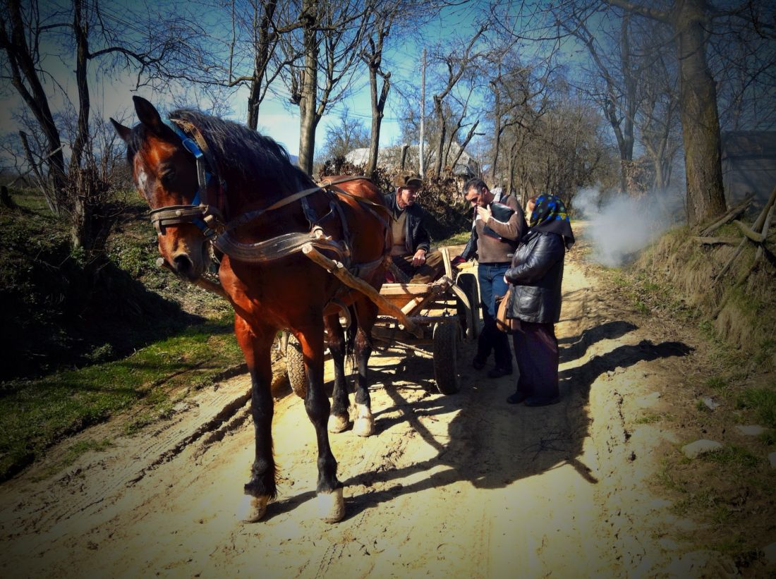 Häst o vagn i Rumänien