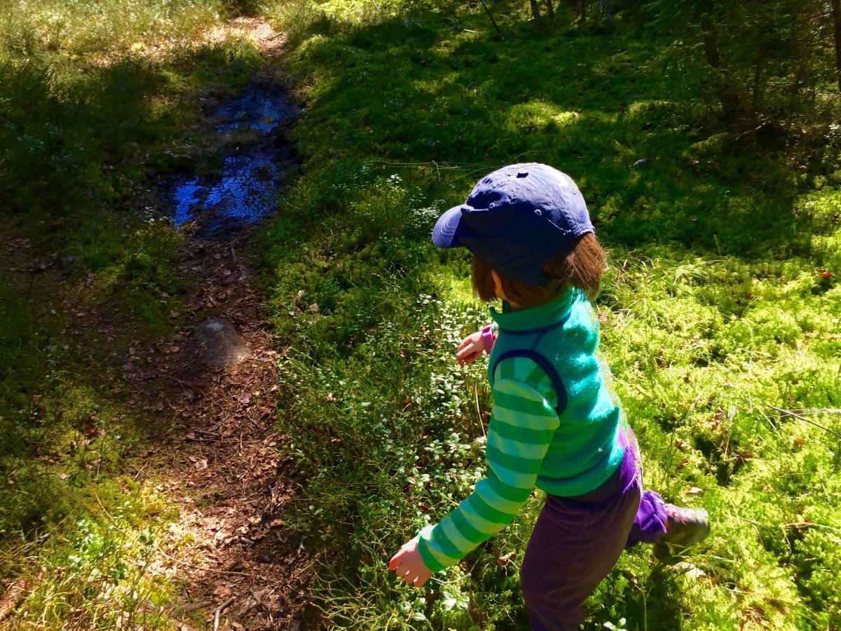 Barn som leker i skog och mark blir lugna och kreativa.