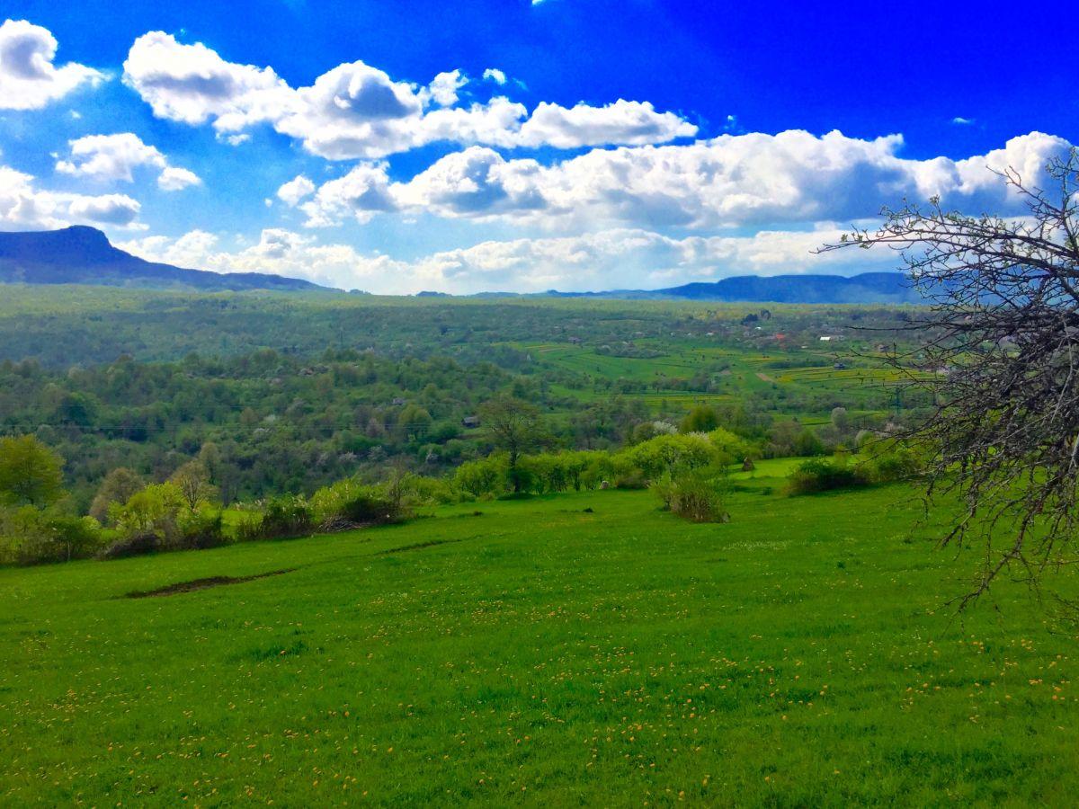 Utsikt från bilfönstret i Rumänien.