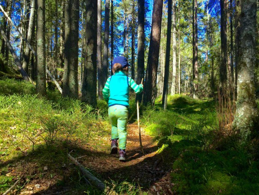 Vandringsbarn på stig i Tyresta Nationalpark utanför Stockholm