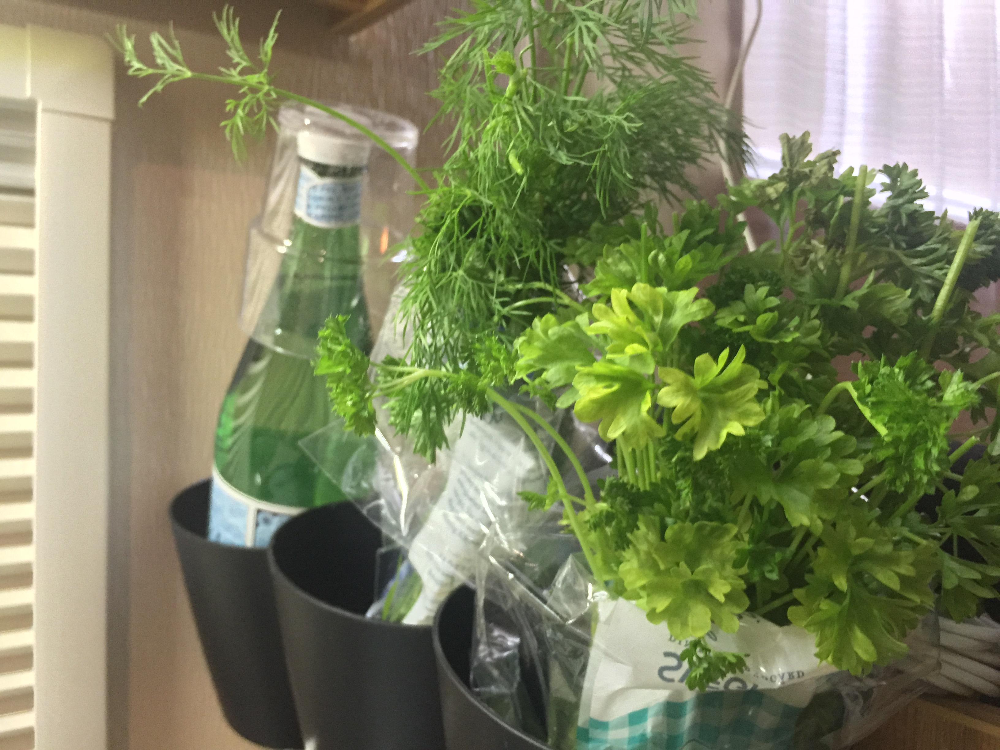 Grön mat i husbilen