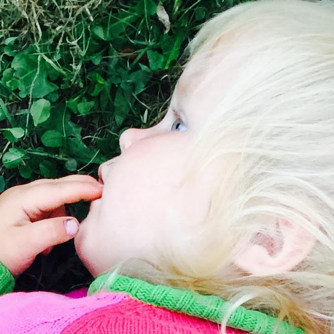 Många ekobyar med många barn i Estland