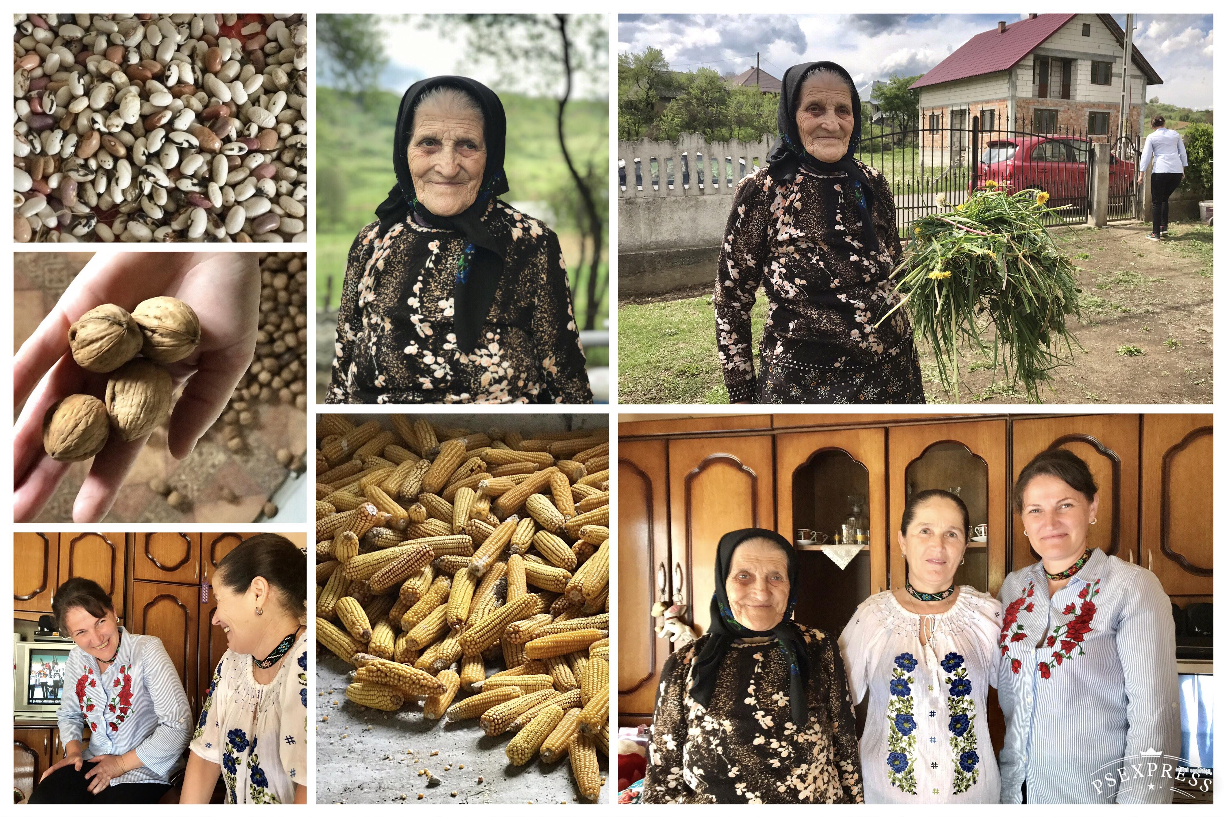 Portrait Transylvania Gospodina collage