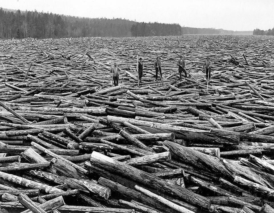 www.arkivcentrumnord.se Early logging industry of Sweden,