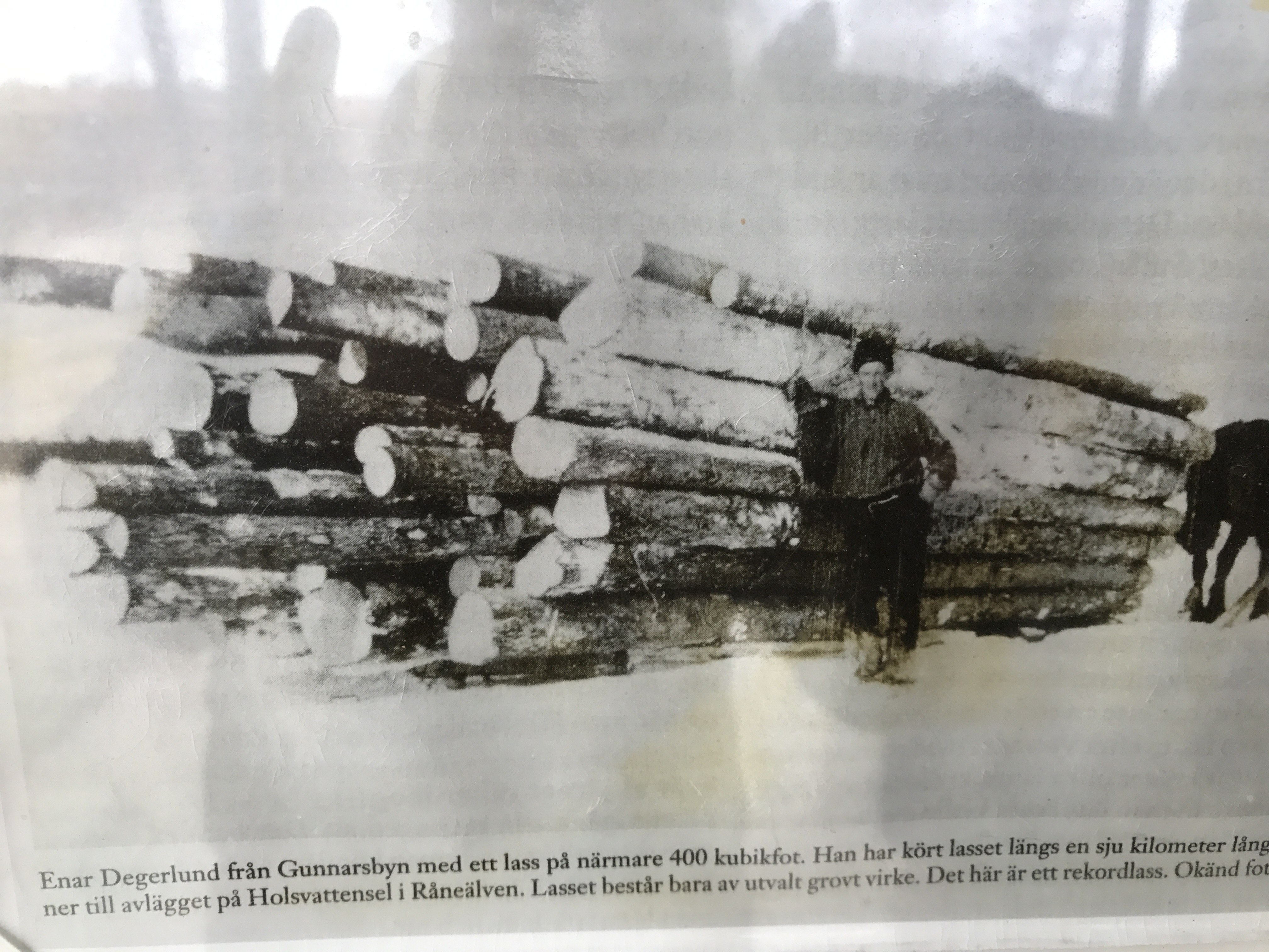 Timber in Sweden, Sveg